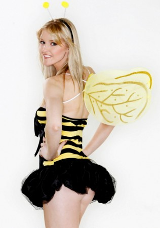 Womens Girls Bumble Bee Animal Bug Bumblebee Costume Wings Set