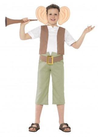 Roald Dahl BFG Friendly Giant World Book Week Costume Character Fancy Dress