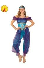 Adult Genie Lady Costume