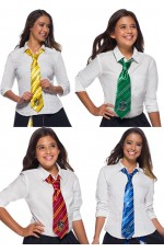 Hufflepuff Ravenclaw Gryffindor Slytherin Hogwarts Houses Tie