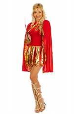 Ladies Roman Toga Robe Greek Goddess Fancy Dress Costume
