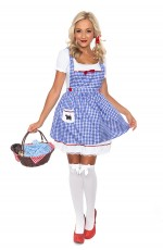 Ladies Wizard of OZ Dorothy Fancy Dress Storybook Hens Party Costume Halloween Outfit
