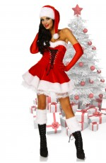 Ladies Santa Deluxe Christmas Costume