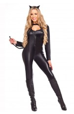 Ladies Catwoman costume