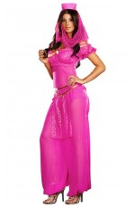 Ladies Arabian Genie Aladdin Fancy Dress Up Hens Party Costume
