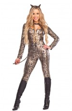 Ladies Catwoman Fancy Dress