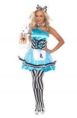 Ladies Alice in Wonderland Fancy Costume