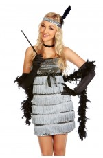 Ladies 1920s Flapper Fancy Dress Costume