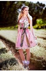 Ladies Oktoberfest Heidi Beer Maid Costume