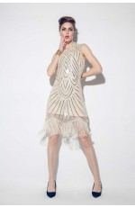 1920s Great Gatsby Style Dress Costume