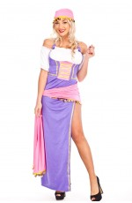 Ladies Gypsy Mysterious Fortune Fancy Dress Costume