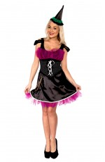 Moonlight Wicked Witch Costume
