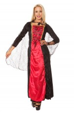 Ladies Vintage Renaissance Medieval Fancy Dress Costume