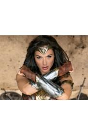 Wonder Woman Princess Diana Cosplay Armband Gauntlets Headband Costume Accessory