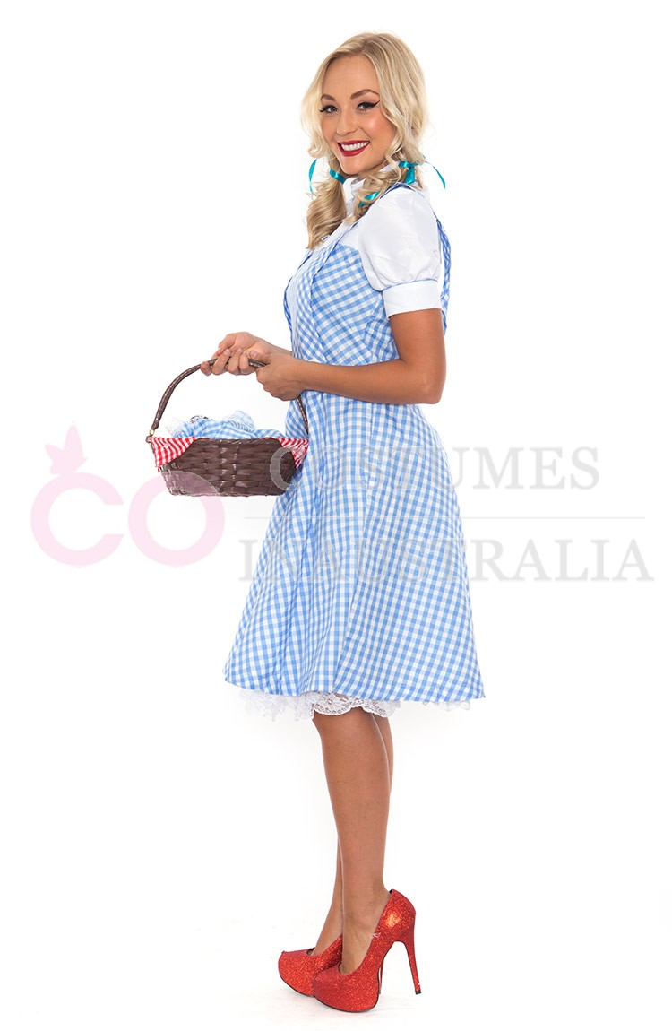 ladies wizard of oz dorothy fancy dress storybook hens party