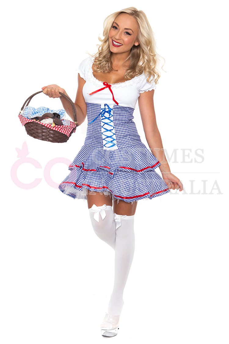 Ladies Wizard of OZ Dorothy Halloween Fancy Dress Storybook Hens ...