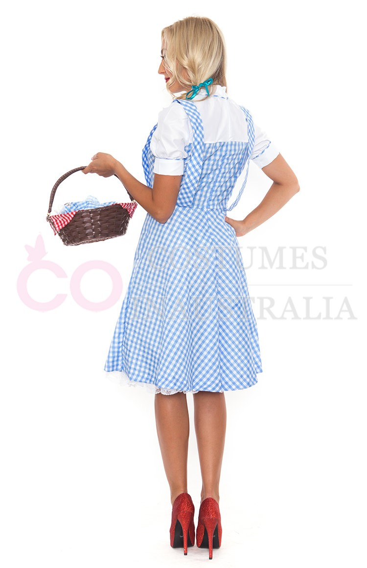 Ladies Wizard of OZ Dorothy Fancy Dress Storybook Hens Party ...