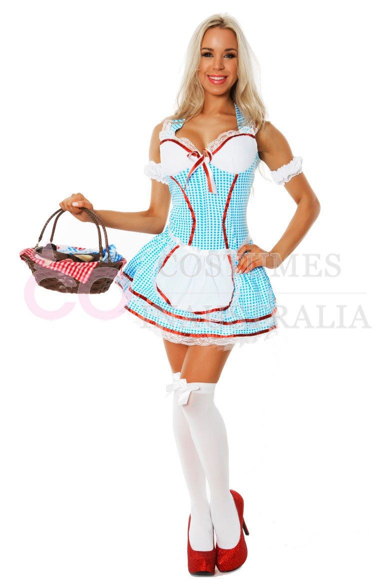 Ladies Dorothy Wizard of OZ Fancy Dress Storybook Hens Party ...